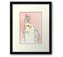 Tweeti Framed Print