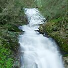 Walker falls by Forrest Tainio