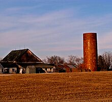 Silo And Rusty Old Barn In Indianola Iowa by Linda Miller Gesualdo
