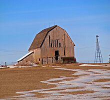 Lonely Little Rusted Barn by Linda Miller Gesualdo