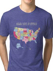 Kawaii States of America Tri-blend T-Shirt