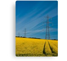 Power in Nature Canvas Print