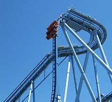 Griffon, Busch Gardens Williamsburg by coasterfan94