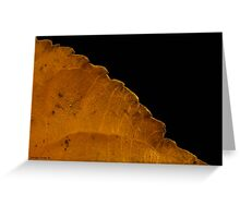 Dried Poplar Leaf Macro Greeting Card