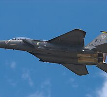 The F-15 Strike Eagle by Jim Haley