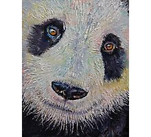 Panda Portrait Photographic Print