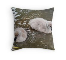 Two cygnets Throw Pillow