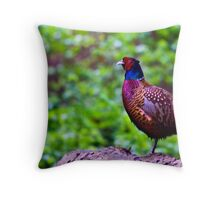 Pheasant 2 Throw Pillow