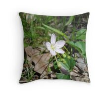 Glistening in the Sun Throw Pillow