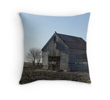 Left for the Birds Throw Pillow