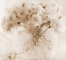 Sepia Geraniums In Bubble Vase  by Sandra Foster