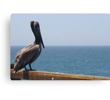 Pelican on the Pier Canvas Print