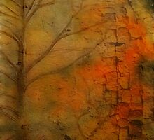 Colors  by Ana CB Studio