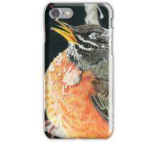 Icy Robin iPhone Case/Skin