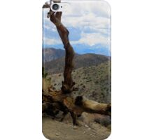 Dead Branch iPhone Case/Skin