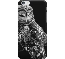 A Lost Feather - barred owl iPhone Case/Skin
