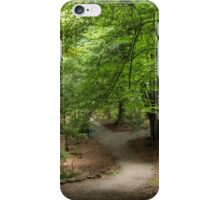 The Emerald Pathway iPhone Case/Skin
