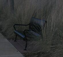 Dark & Empty Bench by dreamNwish