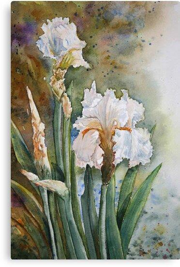 Bearded Iris by Debbie Schiff