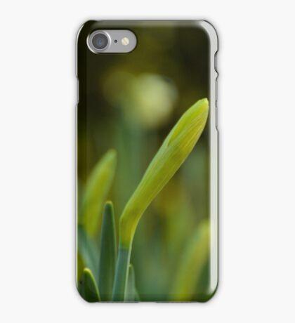 Daffodil Blossoms iPhone Case/Skin