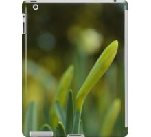 Daffodil Blossoms iPad Case/Skin