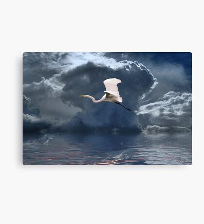 Egret Flying Color Canvas Print