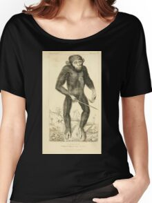 The Animal Kingdom by Georges Cuvier, PA Latreille, and Henry McMurtrie 1834 601 - Mammalia Mammals Women's Relaxed Fit T-Shirt