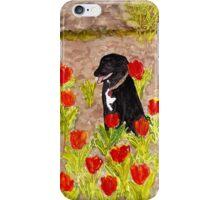 Black Dog in Red Tulips iPhone Case/Skin
