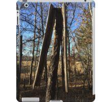 Lightening Struck Tree iPad Case/Skin