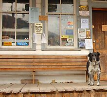 West Virginia Country Store by Daniel Green