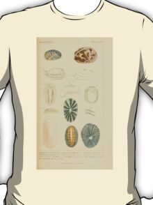 The Animal Kingdom by Georges Cuvier, PA Latreille, and Henry McMurtrie 1834  258 - Mollusca Mollusks T-Shirt