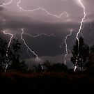 Multiple Lightning by Vaughan Whitworth