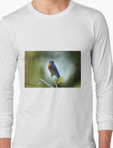 Blue Bird Pose Long Sleeve T-Shirt