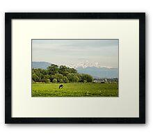 Farm Country Framed Print