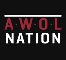 awolnation super tour by Beciong
