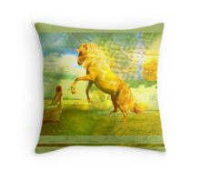 """Together they would conquer the world! It didn't matter that he wasn't real.""  Throw Pillow"