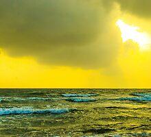 Summer Shine by Neha  Gupta