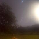 glennifer at night by craig jarman