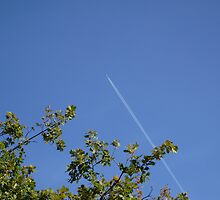Lo -the Contrails by chris51