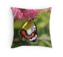 Chasing nectar Throw Pillow