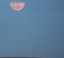 Moonrise by Samantha Van Der Merwe