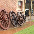 wheels in a row by sharon wingard