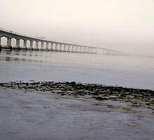 severn bridge by Mark Whitehouse