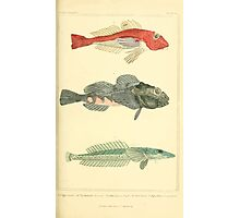 The Animal Kingdom by Georges Cuvier, PA Latreille, and Henry McMurtrie 1834  082 - Pisces Fish Photographic Print