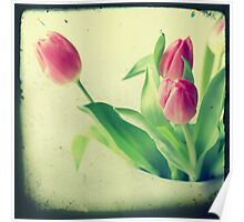 Tulips TTV style Poster