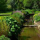 The Stream - Thorpe Perrow by Trevor Kersley