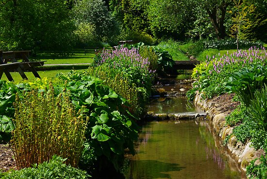The Stream - Thorpe Perrow by Trevor Kersley