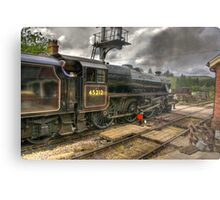 Levisham Crossing Metal Print