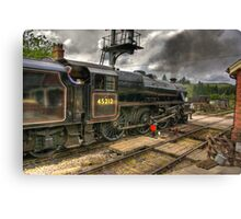 Levisham Crossing Canvas Print
