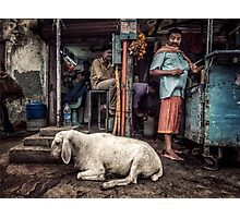 Mutton Curry Photographic Print